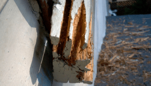 Rotted Sill