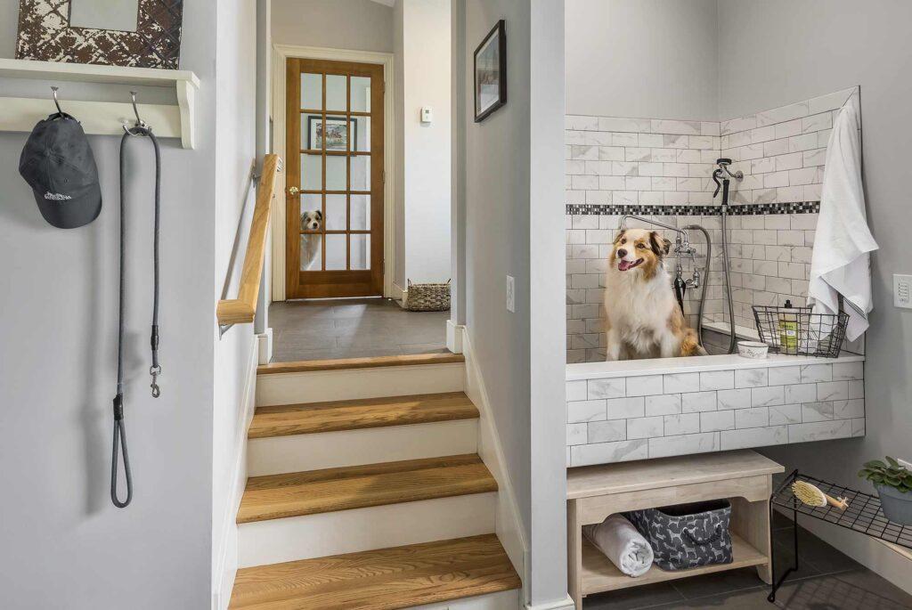 Red House Chapman Home Dog Bath
